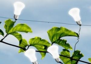 Иван Федотов: Россия является привлекательным рынком с точки зрения инвестиций в возобновляемую энергетику